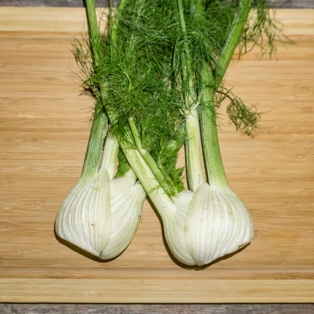 This crunchy Fennel Salad with Dill is absolutely addicting with delicious Parmesan cheese mixed into the dressing. It's super easy to make and will become a family favorite in no time! From www.babaganosh.org