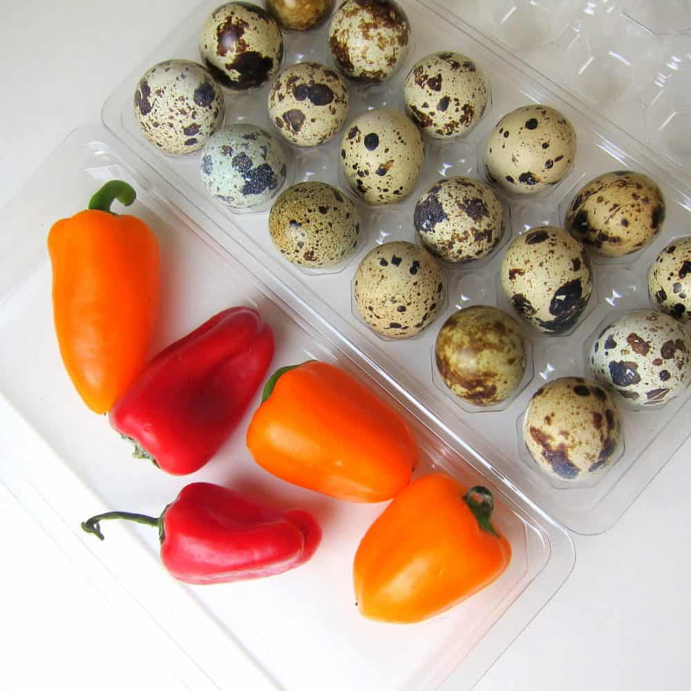 mini bell peppers with quail eggs recipe