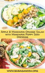 Apple Mandarin Orange Spinach Salad with homemade Mandarin-Poppyseed Dressing - www.babaganosh.org