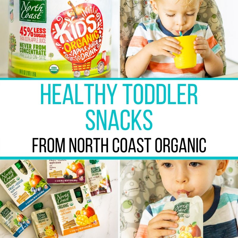 healthy toddler snacks graphic