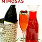 pinnable image of cranberry prosecco mimosa